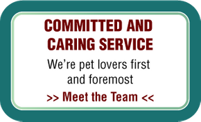 Committed and Caring Service